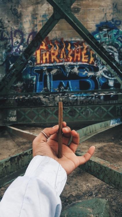 pot marijuana ganja weed bud grass blunt toker stoner pothead smoke a blunt