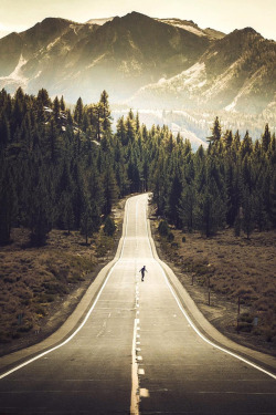 uploads landscape trees mountains nature travel forest road Wood
