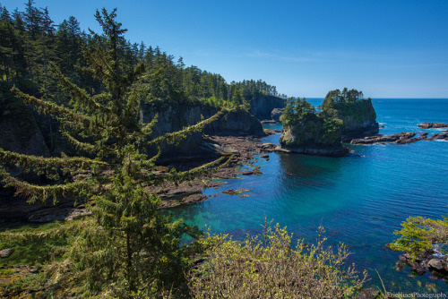 Cape Flattery, Neah Bay on Flickr.