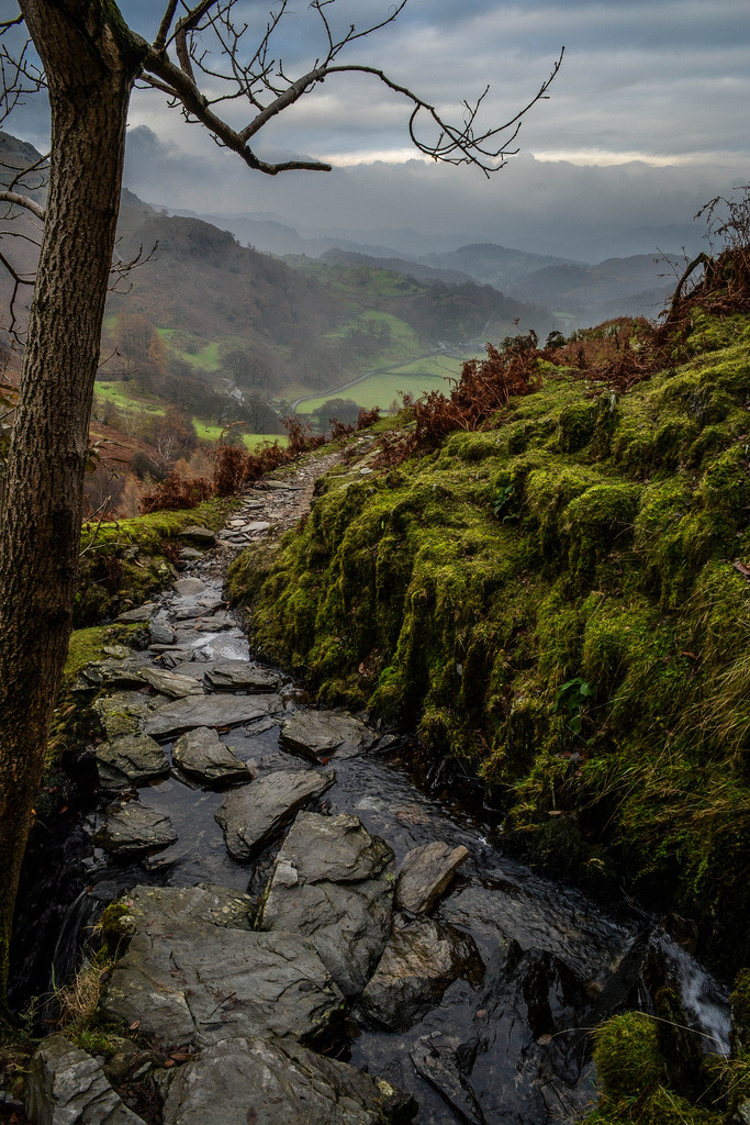 wanderthewood:  Coniston, Lake District, England by Bardsea Photography