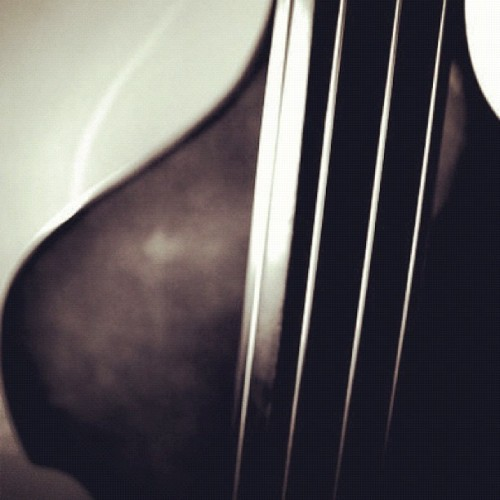jazzaziz:  My soul #jazz #doublebass #upright #music #4strings #bass #jazzaziz