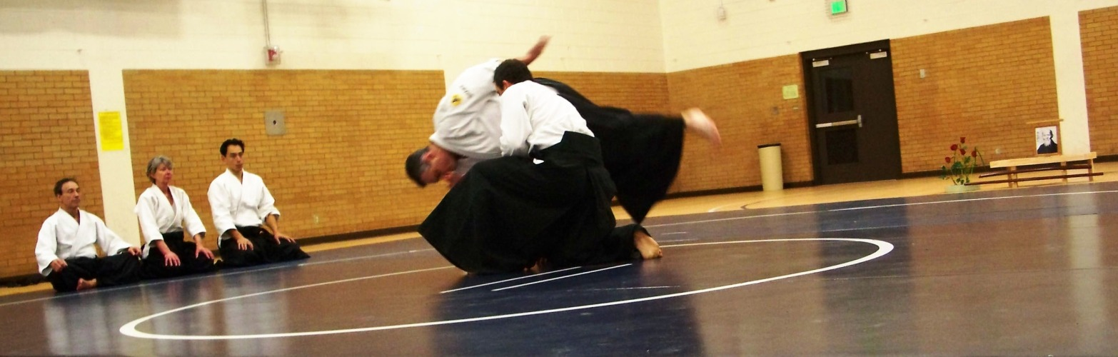 Marc Fisher's Aikido sandan pretest in Logan, UT.