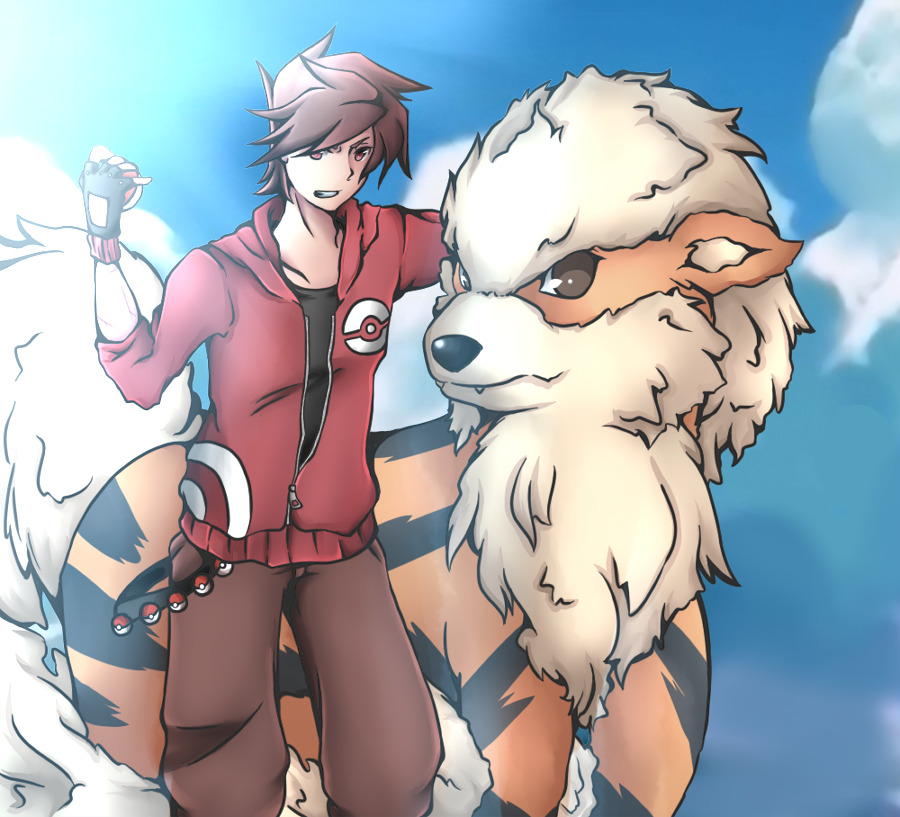 You have been challenged by PKMN Trainer Kai ! by ~Melolli-Gotchi