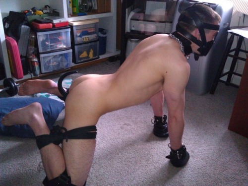 karl666:white slave dogBBC rules