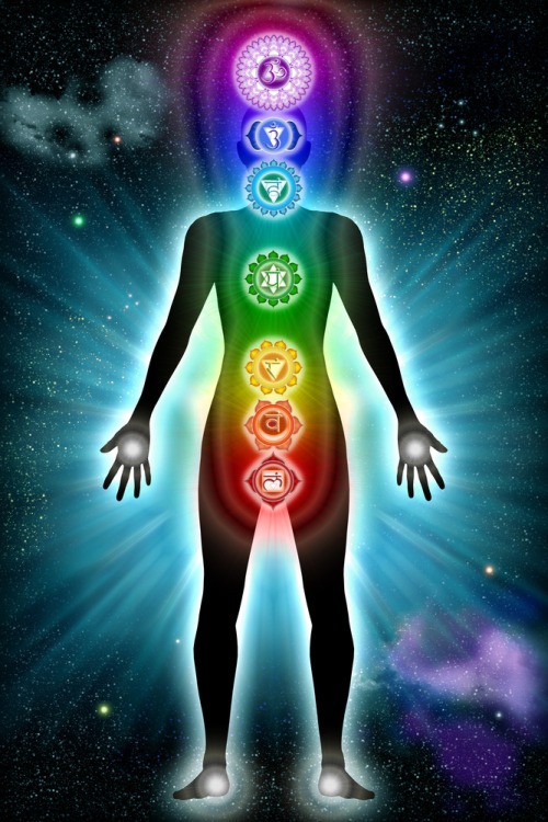 cosmic-rebirth:  The Chakras