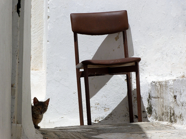 | ♕ |  island cat - Naxos, Greece  | by © Marite2007