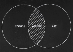 14elfi:  science + art = wonder