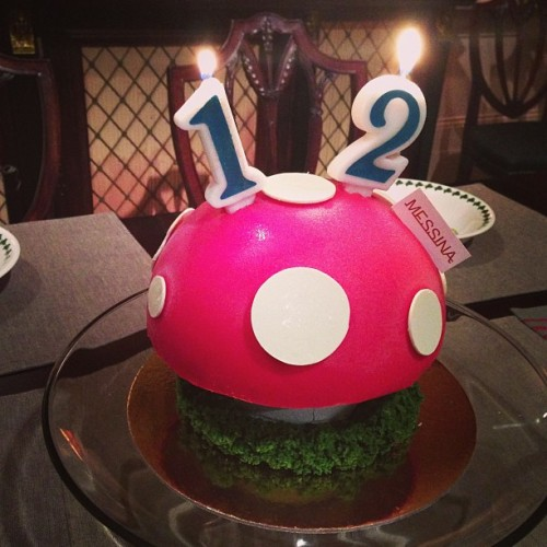 Happy Birthday!  My niece is 12 & this is a gelato mushroom cake - REALLY..