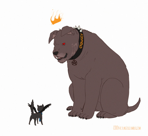 oddthesungod:  hellhound!Crowley and tiny kitten!Castiel  ( ´ ▽ ` )ノ*:・゚✧