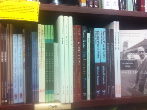 Copies of Caroline Knox's Flemish spotted at Brookline Booksmith in Boston!
