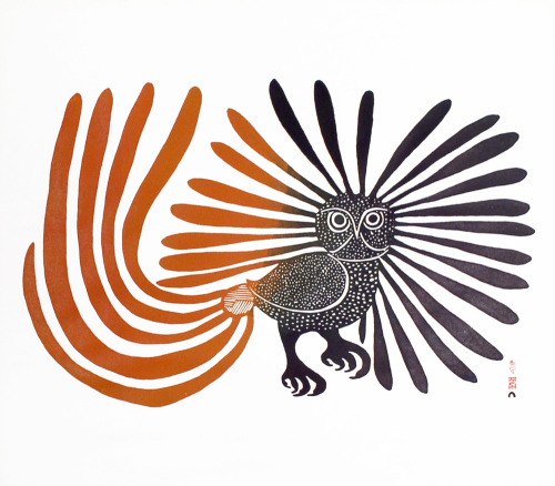 freakyfauna:   Owl by Kenojuak Ashevak (RIP). Found here.    1/15/2013 update: I did a feature on the artist on 50 Watts