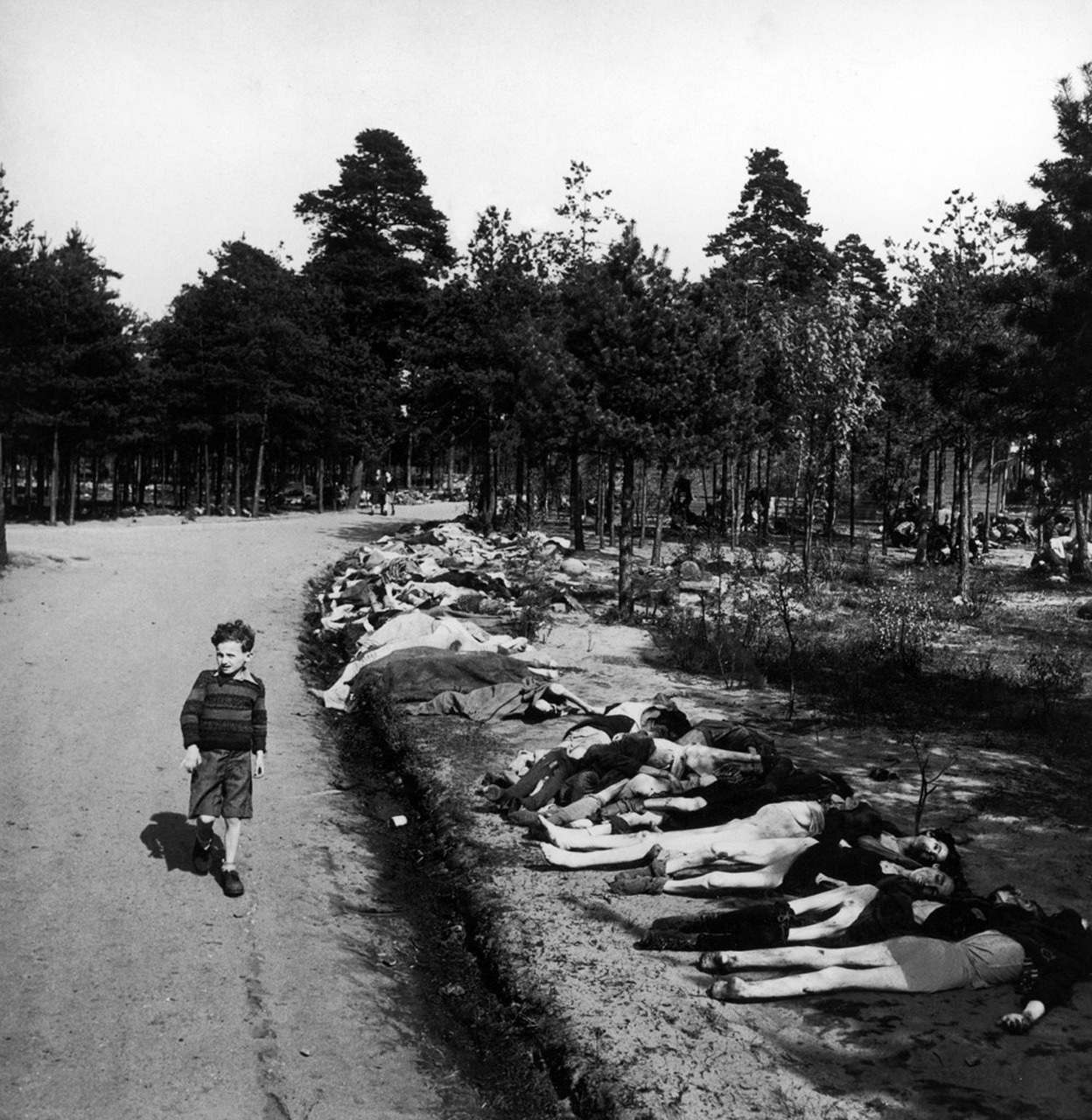 bag-of-dirt:  A German boy walks down a dirt road lined with the corpses of hundreds of concentration camp inmates who died of starvation and disease at Bergen-Belsen in northwestern Germany. 20 April 1945