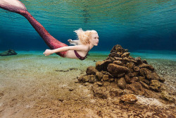 Follow For Mermaids