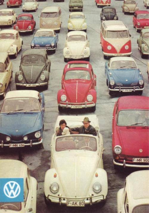 bayatgofret:  We Heart It'te fusca | via Facebook. http://weheartit.com/entry/62015918