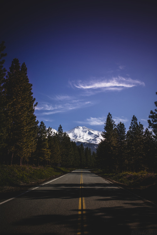 theoceanrolls:  The Road to Mt. Shasta (by Andrew H Wagner)
