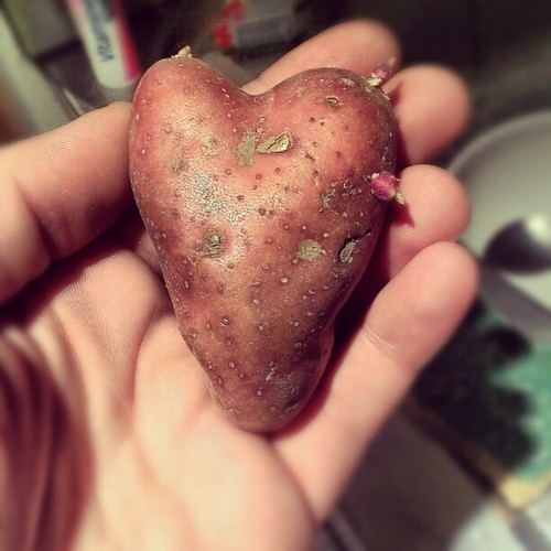 #hearth #potatoes