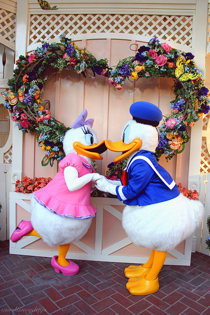 Donald and Daisy on Flickr.