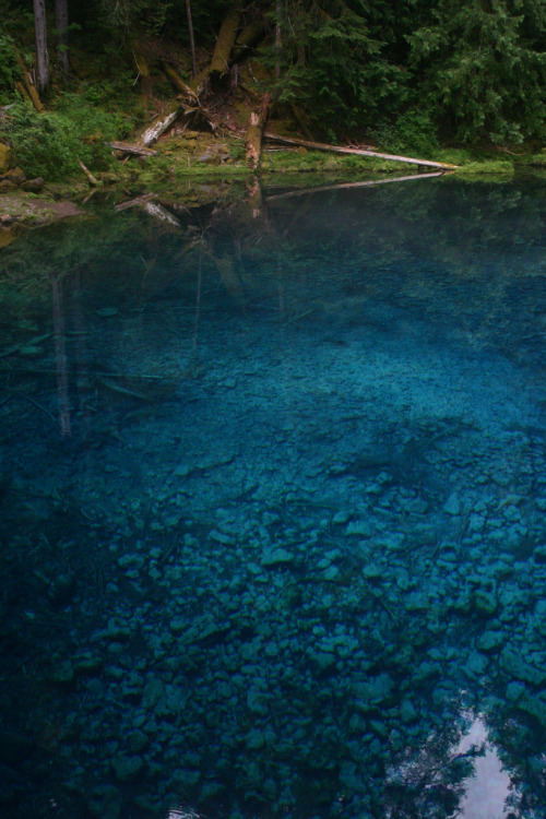 -vvaste:  Tamolitch Pool (by the 4 headed lion)