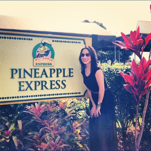 On the agenda today: riding the Pineapple Express! (at Dole Plantation)