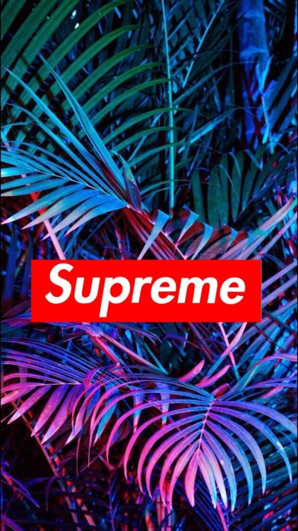 Supreme Wallpaper Download Free High Resolution Backgrounds For