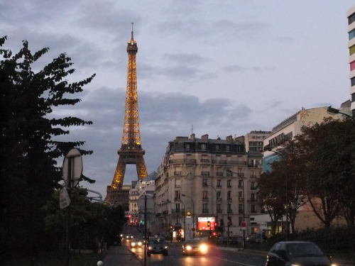 parisbeautiful:  night falls over Paris by TruckerPat on Flickr.