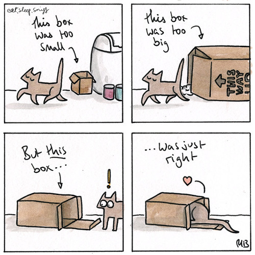 I've never known a cat to be so anal about boxes as Tali. Previous cats I've owned have all loved boxes regardless of size or quality but Tali, she has more refined tastes.