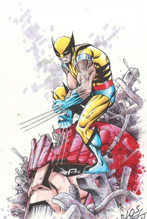 keaneoncomics:  Wolverine commission by Carlos Pacheco
