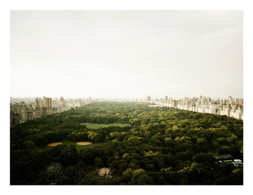 Central Park, New York, 2011 by Josef Hoflehner ('Patience' for the perfect image – CNN Photos)