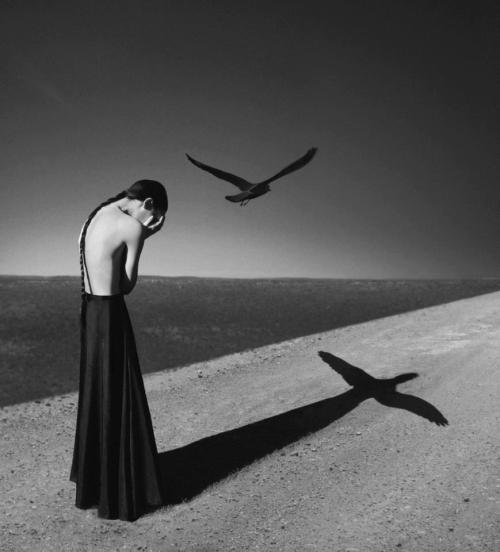 Inspirational Photo © Noell S. Oszvald