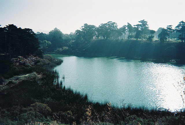 arquerio:  lake merced, san francisco by Karina Y on Flickr.
