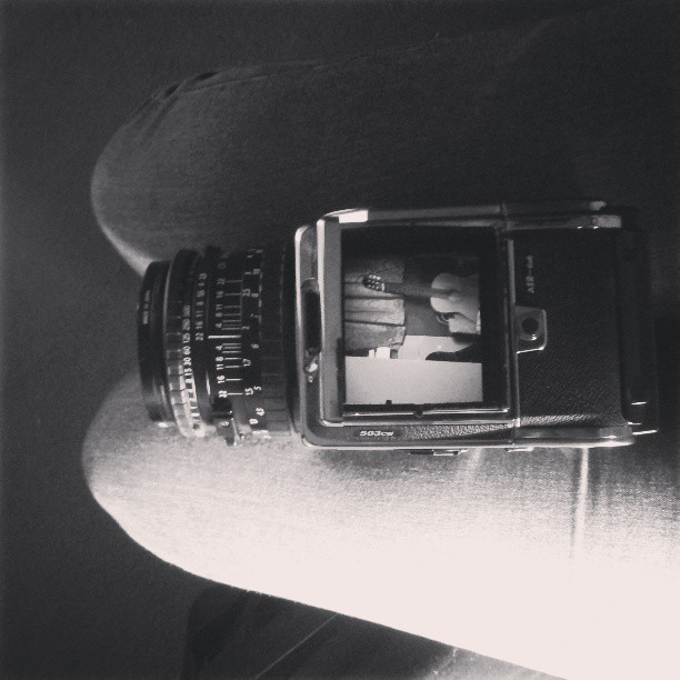 Adopting this baby for a few weeks. Isn't she a beaut? #hasselblad #mediumformat