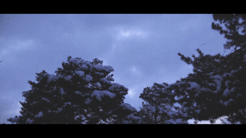 Experimenting with the colour grading for Caught a Ghost's music video 'Time Go'. Got some really nice shots to play with.