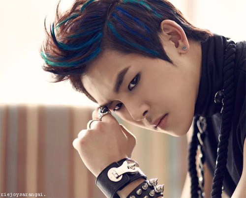 Hoya in different blue color hair.