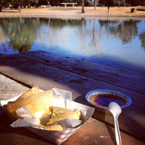 Saturday morning picnic feast: awesome tamales and freshly made Creme brûlée. Not a bad way to start our weekend. #yum #food #foodporn #foodie #tasty #phoenix #arizona #instagramaz #igersphx #farmersmarket #market #happy #noms #lake #water #park #nature #outside  (at Roadrunner Park Farmers Market)