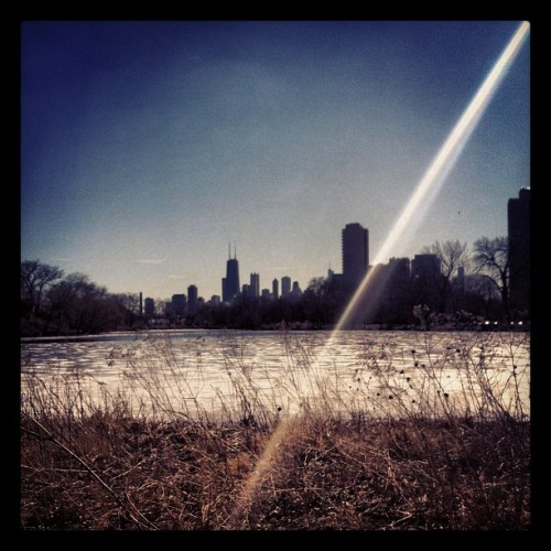 How could you not want to run everyday with a view like this.  (at Diversey Harbor Park)
