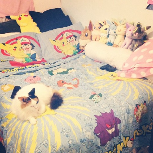 shy-town:  I love my bed <3