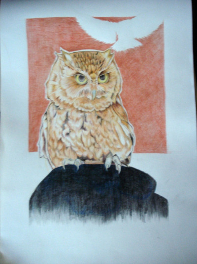 eatsleepdraw:  ZE OWL HE IS MAGNIFICENT HE FLUFFS MY PILLOWS AT NIGHT http://najdraws.wordpress.com  OWLMAN DOES EXIST!