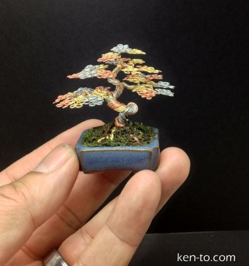 (Tri color wire mame bonsai tree by Ken To by *KenToArt on deviantARTから)