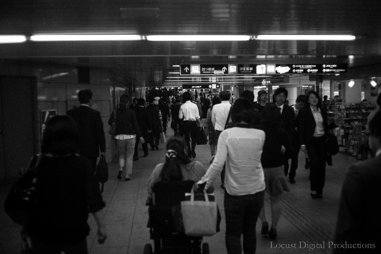"""Going Home"", Snapshot"