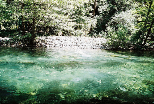 rouvre:  Cool, clear water.. by xTorfinnx on Flickr.