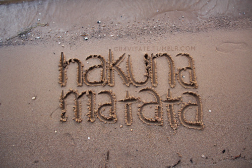 hakuna matata :~) it means no worries for the rest of your daaays