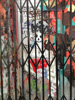 Lady skull behind the gate Clarion Alley 3/2/13