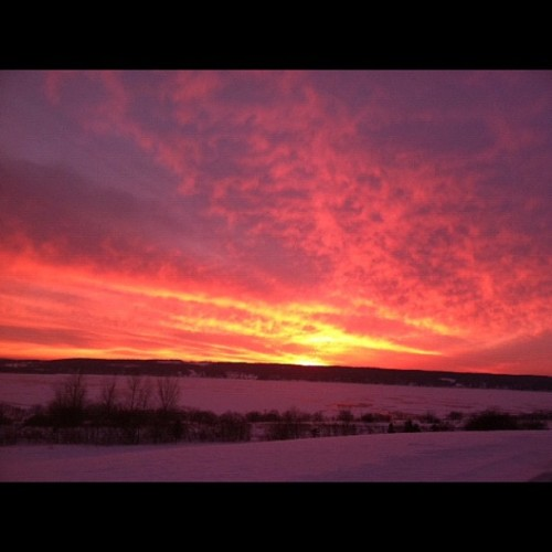 Nature's Design Work Sunset over a frozen Chautauqua Lake. 1/8/13 #design #sunset #Chautauqua #winter #color #orange #pink #purple #sun #sky #frozen #nature #beauty #evening #cold #light #evening #lakes #WNY #NYS #home #nofilter