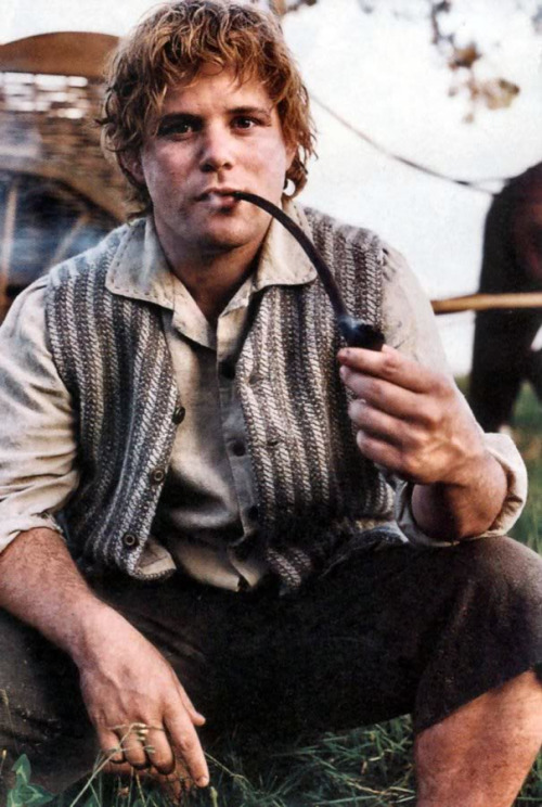 gnostic-forest:  elf-of-lorien:  Samwise Gamgee