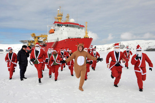 ukinusa:  HMS Protector's ship's company have taken to the ice in Antarctica dressed as Father Christmas in support of East Anglian Children's Hospice. HMS Protector has been affiliated with the East Anglian Children's Hospice since August 2012. The East Anglian Children's Hospice provides support to families and care for children and young people with life-threatening conditions across Cambridgeshire, Essex, Norfolk and Suffolk. [Photo by: Leading Airman Arron Hoare, Crown Copyright/MOD 2012]