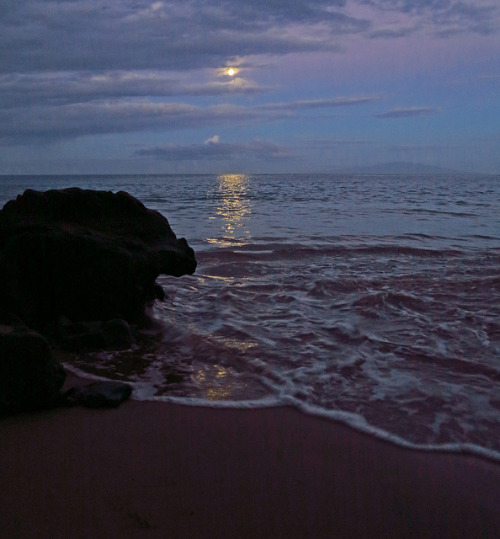 spacettf:  moonsetting by bluewavechris on Flickr.   I'll miss you beach.