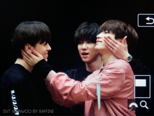 cheolshu:  190418 YMMD Fansign in Tokyo #haos hair!!!  #its so cute!!  #I want to play ): #Minghao#Wonwoo#Vernon#seventeen