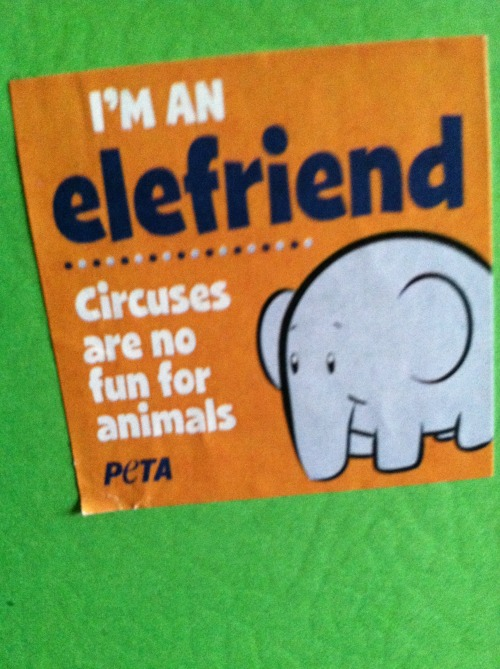 i love elephants, but i love the circus, so torn!