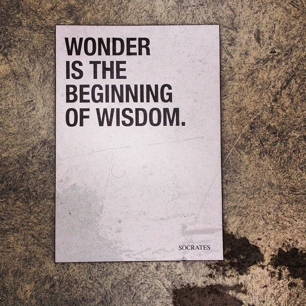cyan1975:  Wonder is the beginning of wisdom (Socrates) #quote #socrates #wonder #sticker  (hier: Düsseldorfer Altstadt)