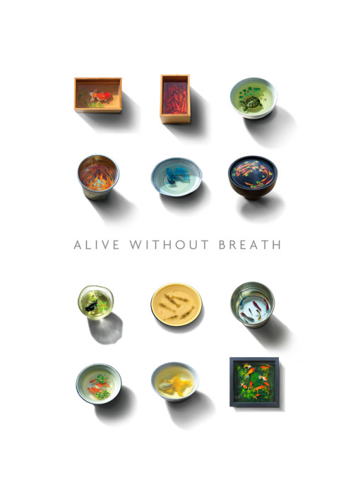 Alive without breath (by kenglye)